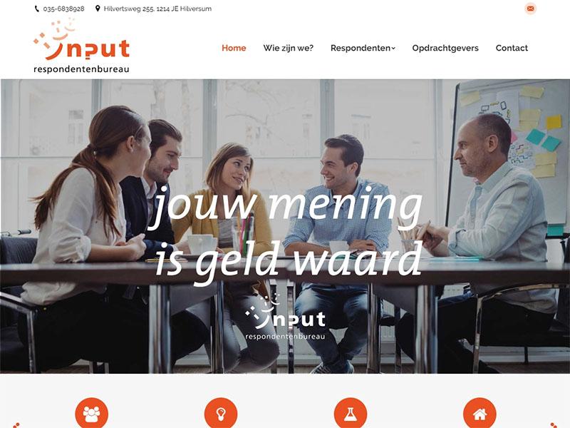 Website - Input